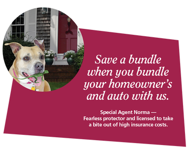 Save when you bundle home and auto insurance